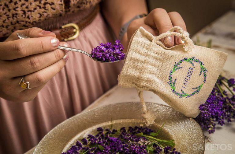 Lawenda spożywcza - poznaj przepisy na desery z lawendą!